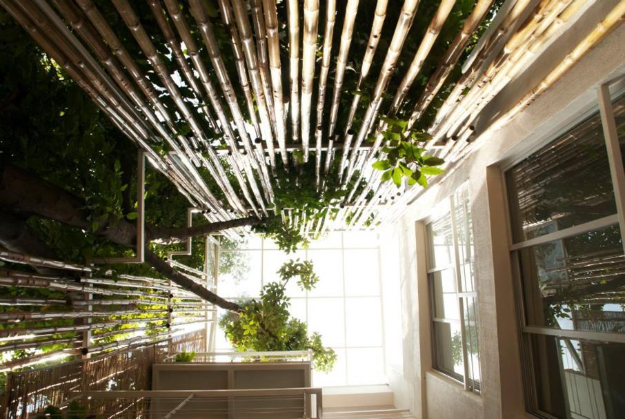 Studioxs Living Core The Sky Through The Atrium